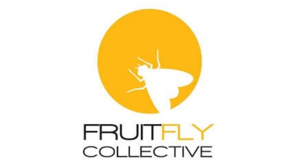 Guest Blog: Fruitfly Collective advice on telling children